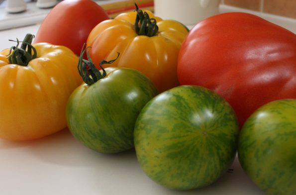tomates 3 couleurs