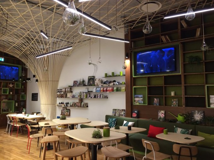 NewTree Café