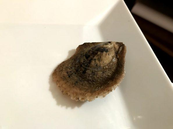 huître perlière chez Moss